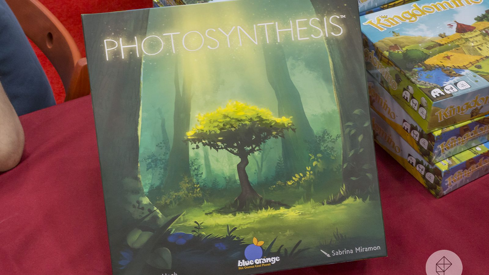 Photosynthesis is a visual and mechanical marvel - Polygonclockmenumore-arrownoyespoly-lt-wire-logo image