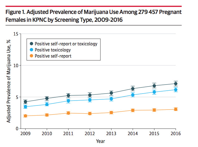 Marijuana And Pregnancy Heres What The Science Says Vox