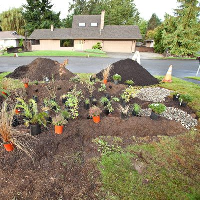 How To Build A Rain Garden To Filter Run Off This Old House