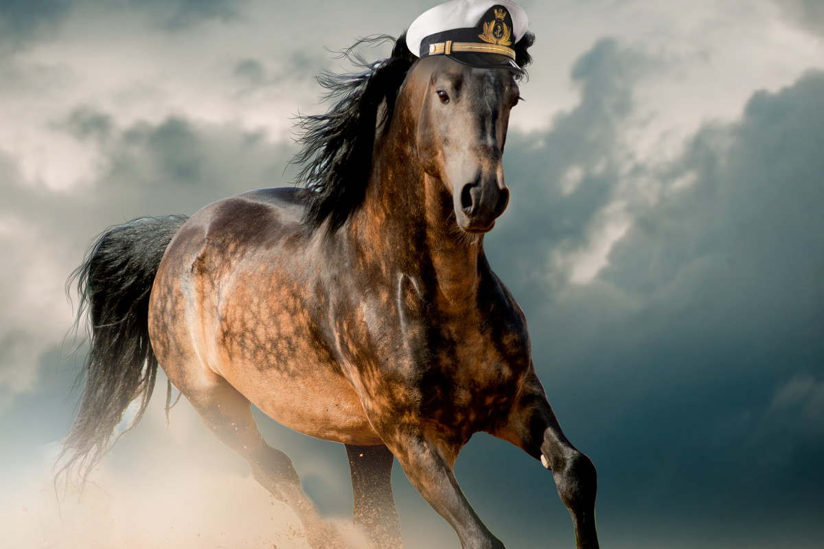 A photo illustration depicting the eternal bond between racehorse names and yacht names.