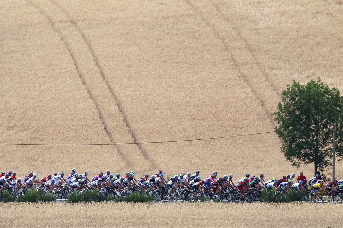CARMAUX, FRANCE - JULY 12:  The peloton during Stage 10 of the 2011 Tour de France from Aurillac to Carmaux on July 12, 2011 in Carmaux, France.  (Photo by Michael Steele/Getty Images)