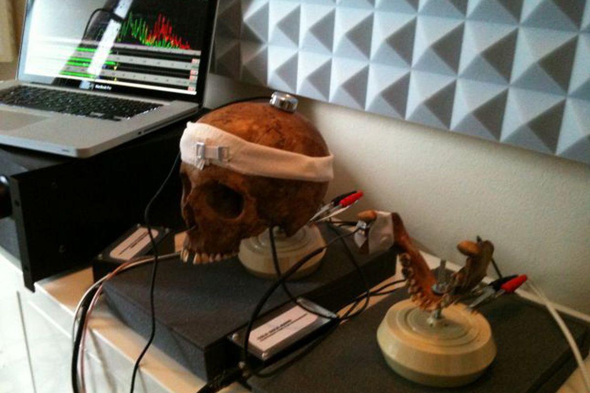 Inside skull recording