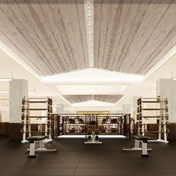 The strength room