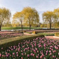 """<a href=""""http://www.chicagobotanic.org/"""">The Chicago Botanic Garden</a> [1000 Lake Cook Road in Glencoe] has several event spaces—both indoor and outdoor—tucked into its sprawling acres of gardens, lakes, and woodlands. Our favorite? The English Walled Ga"""