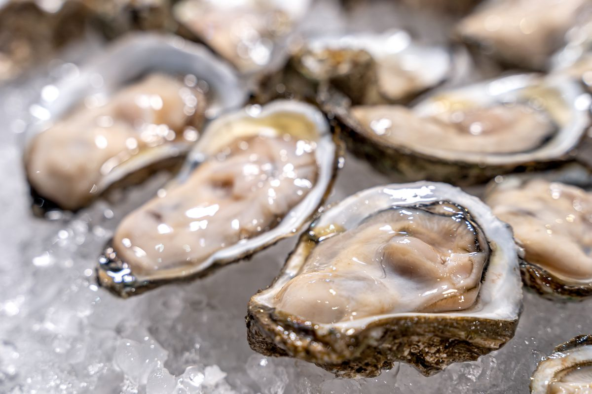 A stock image of oysters