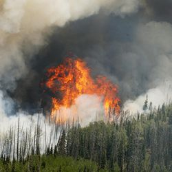 The Brian Head Fire, pictured Friday, June 23, 2017, continues to grow and has burned more than 27,700 acres. At least 13 homes and eight out buildings have been destroyed by the fire.