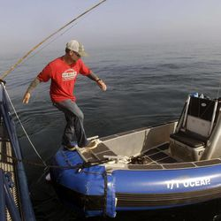 In this Sept. 7, 2012, photo, Ocearch expedition leader Chris Fischer steps onto a small sport fishing boat to check chum locations for signs of great white shark activity in the Atlantic Ocean off the coast of Chatham, Mass. The Ocearch team baits the fish and leads them onto a lift, tagging and taking blood, tissue and semen samples up close from the world's most feared predator. The real-time satellite tag tracks the shark each time its dorsal fin breaks the surface, plotting its location on a map.