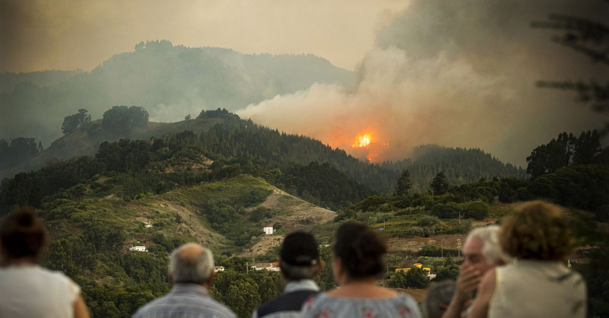 Photos: wildfires hit the Amazon, Brazil, Spain, France, Turkey, and Indonesia
