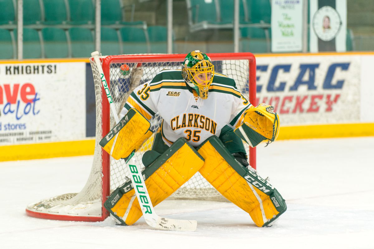 Shea Tiley in goal for the Clarkson Golden Knights