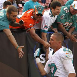 Sep 8, 2013; Cleveland, OH, USA; Miami Dolphins wide receiver Brian Hartline (82) celebrates with fans after a 23-10 win over the Cleveland Browns at FirstEnergy Field.