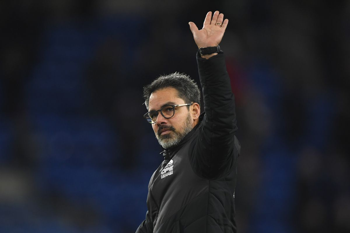 Image result for david wagner