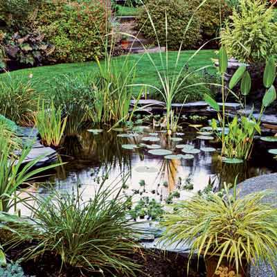 Everything You Need To Know To Build The Perfect Backyard Pond This Old House