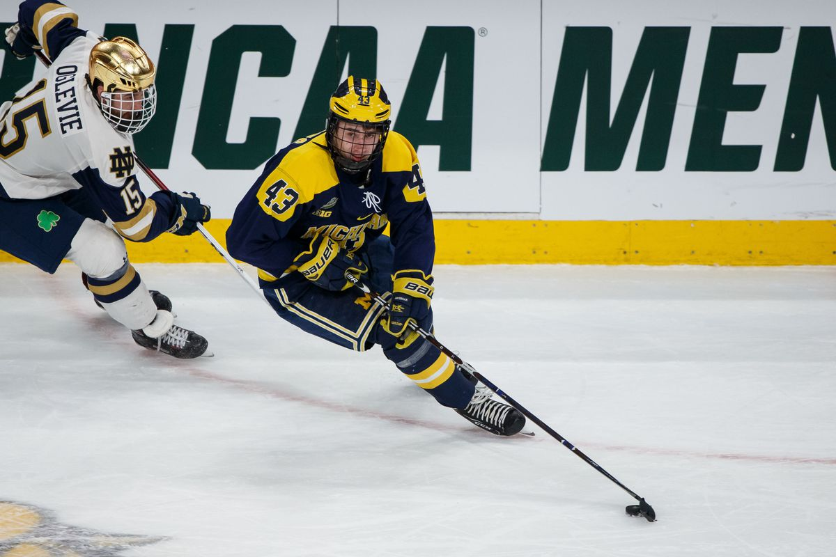cheap for discount b0f67 4e672 NHL draft 2018 player profile: Quinn Hughes a potential ...