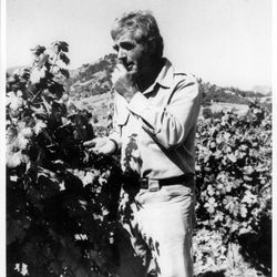 Jim Barrett c. 1972. [Source: Chateau Montelena}