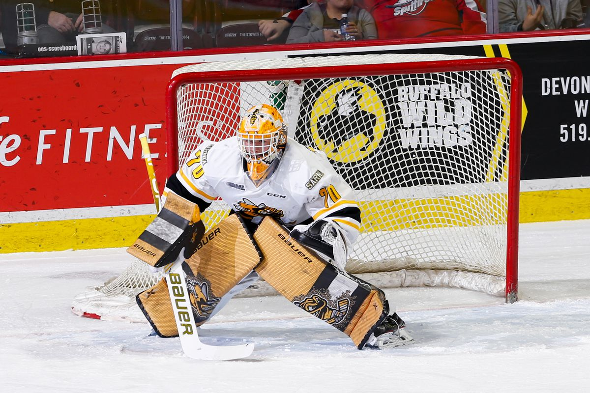 Goaltender Benjamin Gaudreau #70 of the Sarnia Sting skates against the Windsor Spitfires at the WFCU Centre on February 18, 2020 in Windsor, Ontario, Canada.