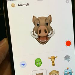 Apple expands Animoji roster with giraffes, warthogs, owls