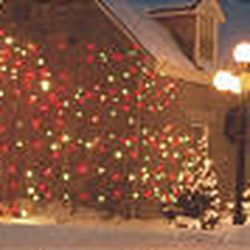 Pioneer homes in Mount Pleasant will be featured in a Holiday Home Show, below.
