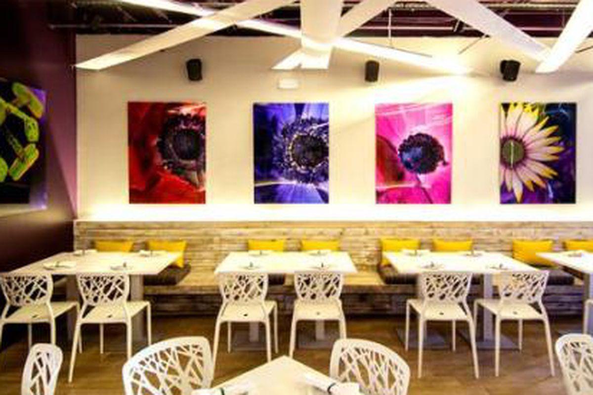 Global Street Food Blooming in Wynwood Tonight - Eater Miami
