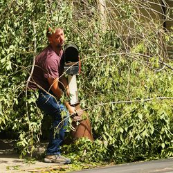 Jason Watson lifts his mailbox from under a downed tree in the front yard of his home in Farmington on Tuesday, Sept. 8, 2020. The tree was toppled by high winds.