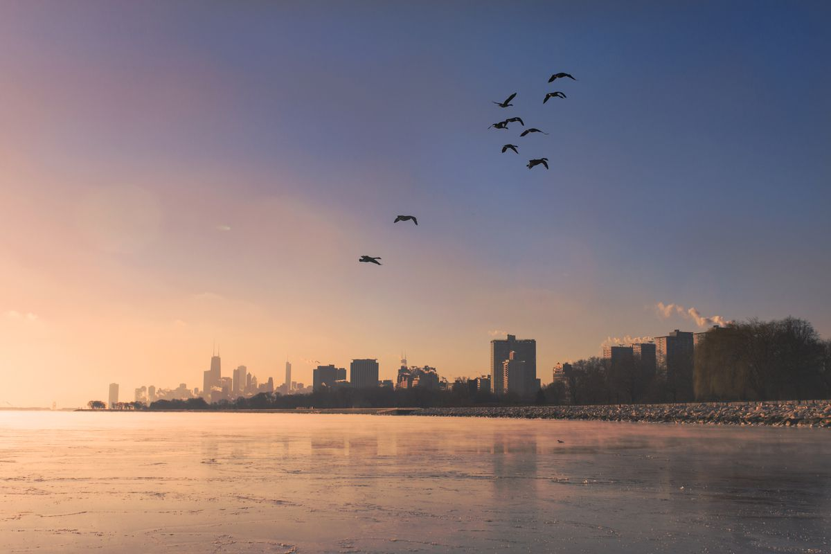 Sun rises over Chicago's lakefront dotted with a row of buildings under a dawn sky with roughly a dozen birds in flight.