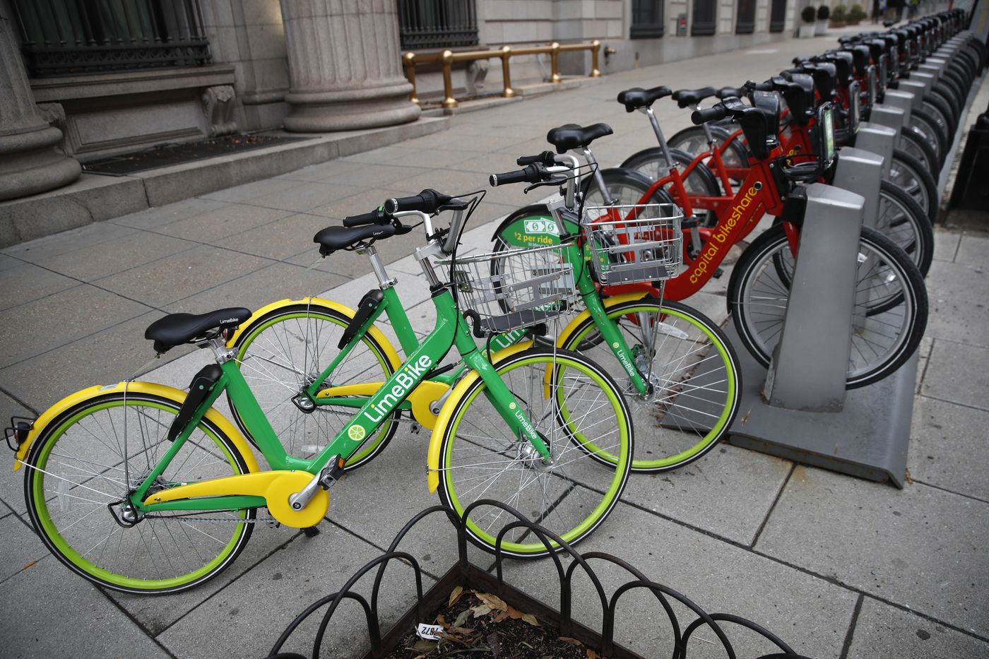 As scooters, bikes, and transit startups flood the streets