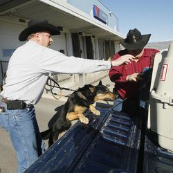 John Logie is reunited with his retired K9 partner Balto at the Salt International Airport in Salt Lake City Saturday, March 15, 2014. In May 2010 Logie was in Afghanistan working as a contractor and was injured by an IED. Balto pulled him away from the primary IED which would have killed him. Logie's brother James Huntsman, right, helps.