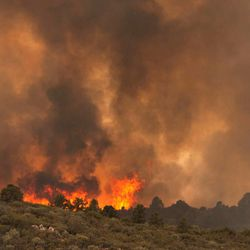 Flames top a ridge as the Yarnell Hill Fire moves towards Peeples Valley, Arizona on Sunday, June 30, 2013. (AP Photo/The Arizona Republic, Tom Story)