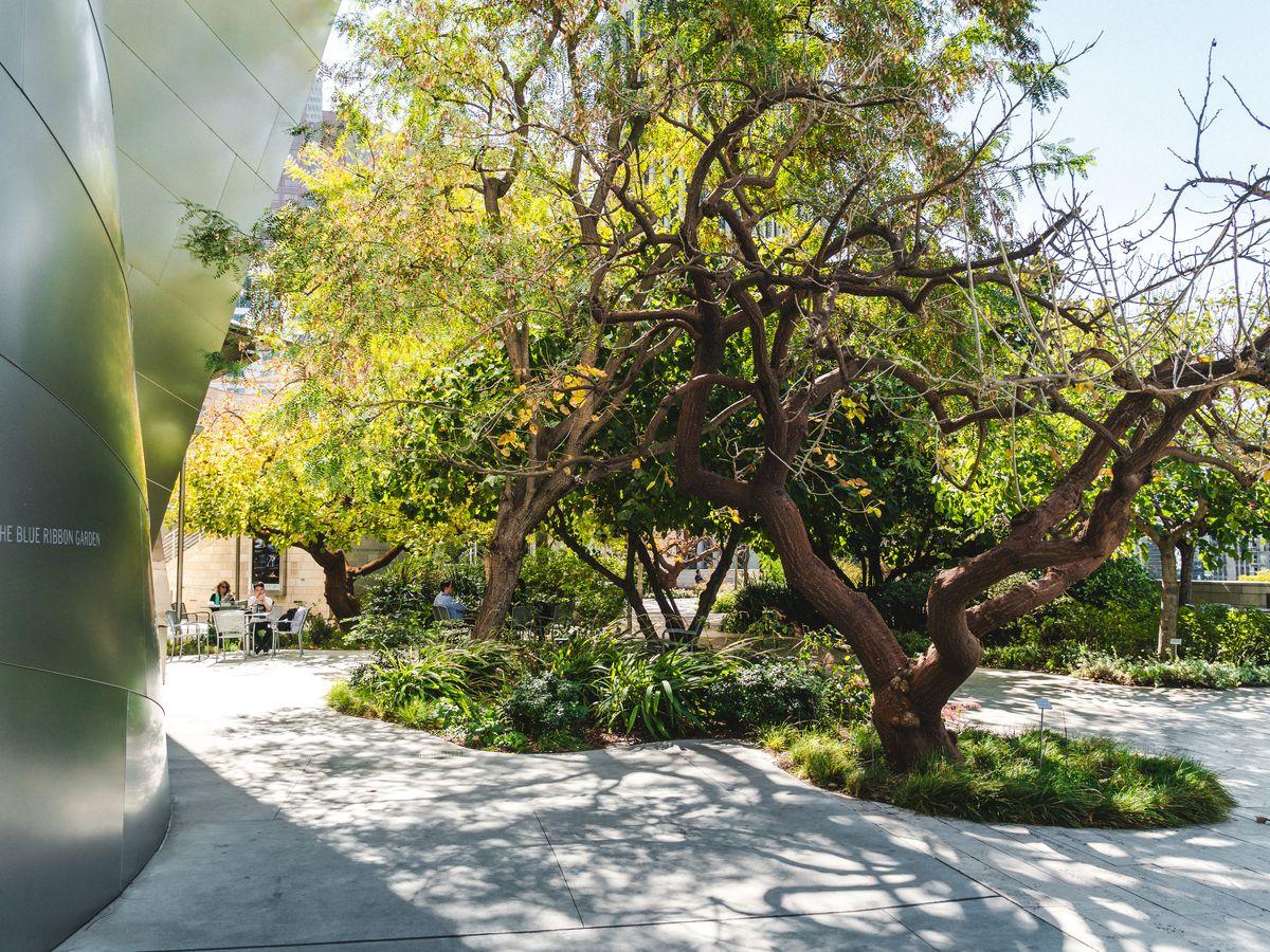 25 secret gardens and green spaces hidden around LA - Curbed LA