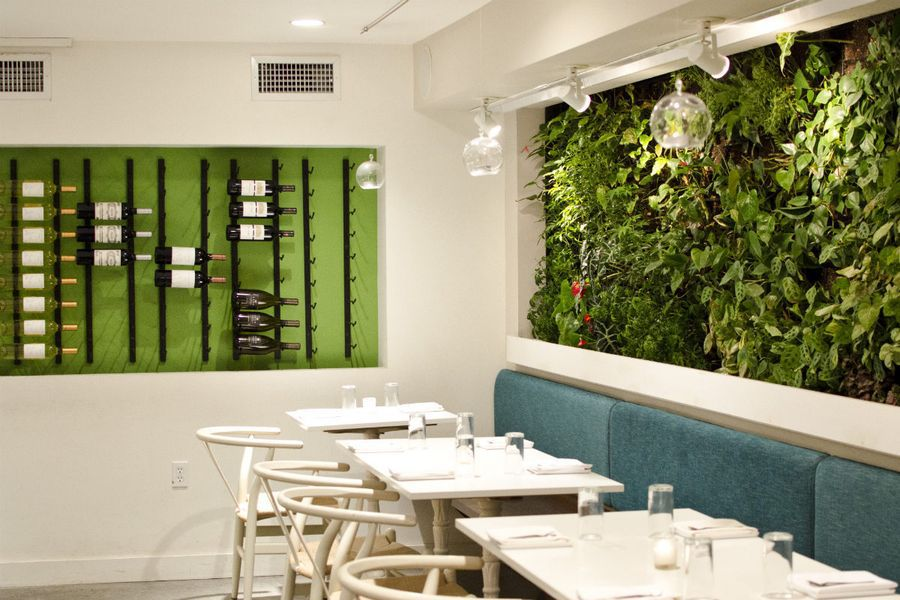 A teal booth, wall of live plants, and white walls and tables at a restaurant
