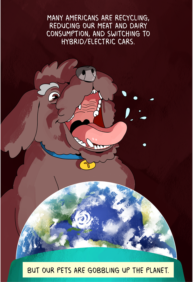 Many Americans are recycling, reducing our meat and dairy consumption, and switching to hybrid/electric cars. But our pets are gobbling up the planet.