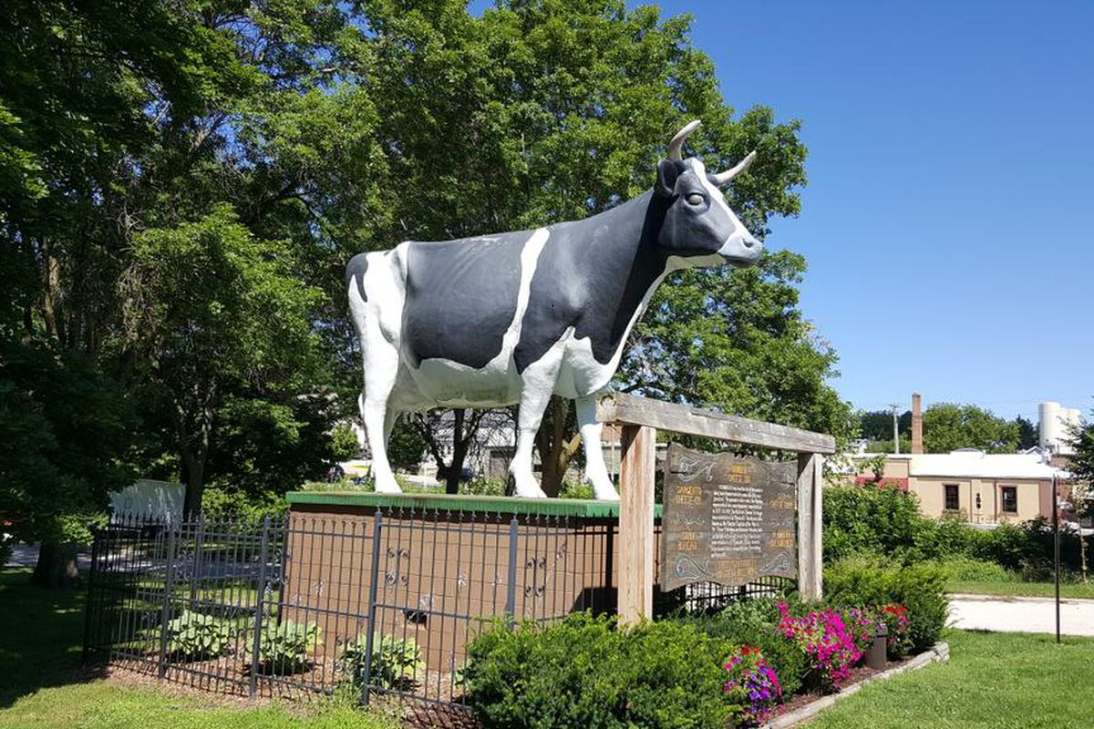 I am in Wisconsin this weekend look at this goddamn cow