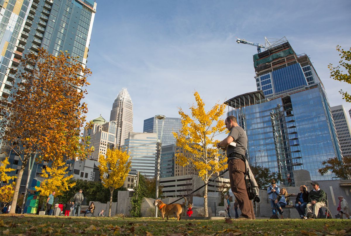 A man walks his dog in Romare Bearden Park in uptown Charlotte on a sunny, fall day.