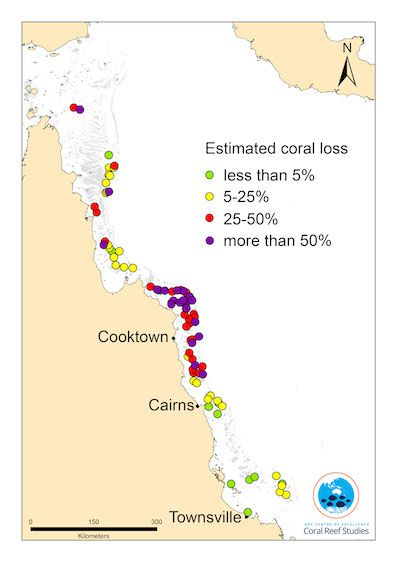 Map of mortality estimates on coral reefs along 1100km of the Great Barrier Reef.