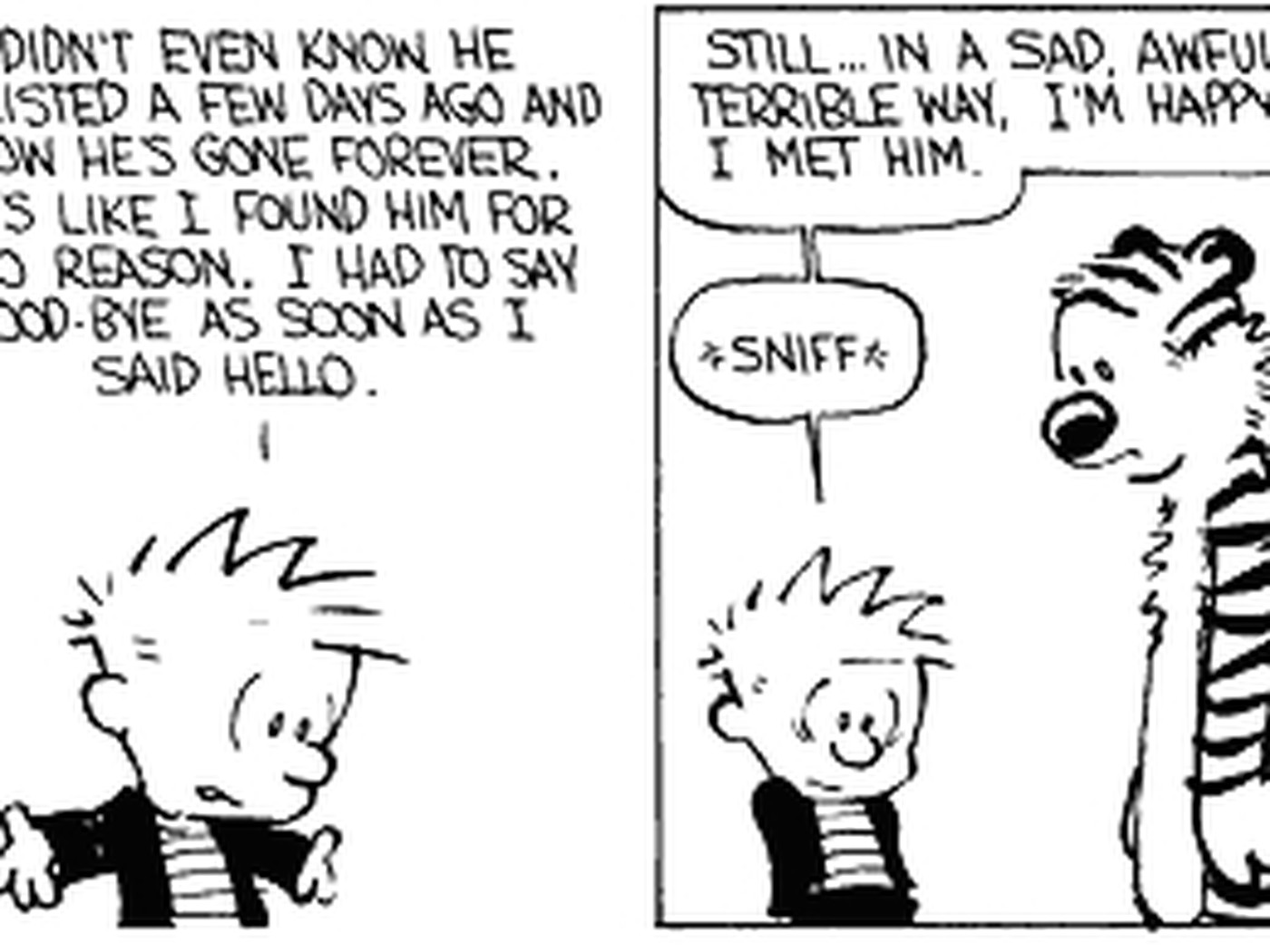 25 Great Calvin and Hobbes Strips - Progressive Boink