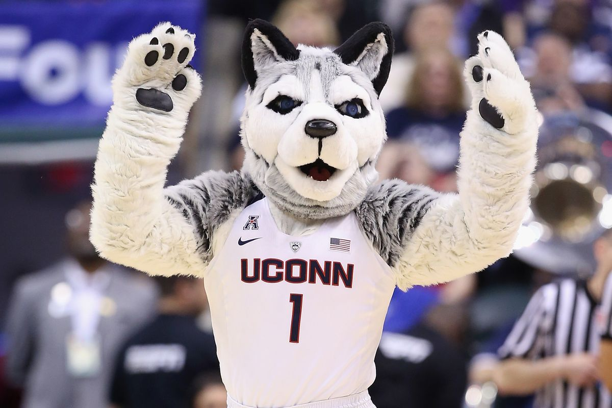 No WLAX pictures in the hopper, so here's a picture of Connecticut's mascot.