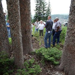 A media tour, hosted by the Utah Farm Bureau, in the Uinta National Forest, Friday, July 13, 2012.