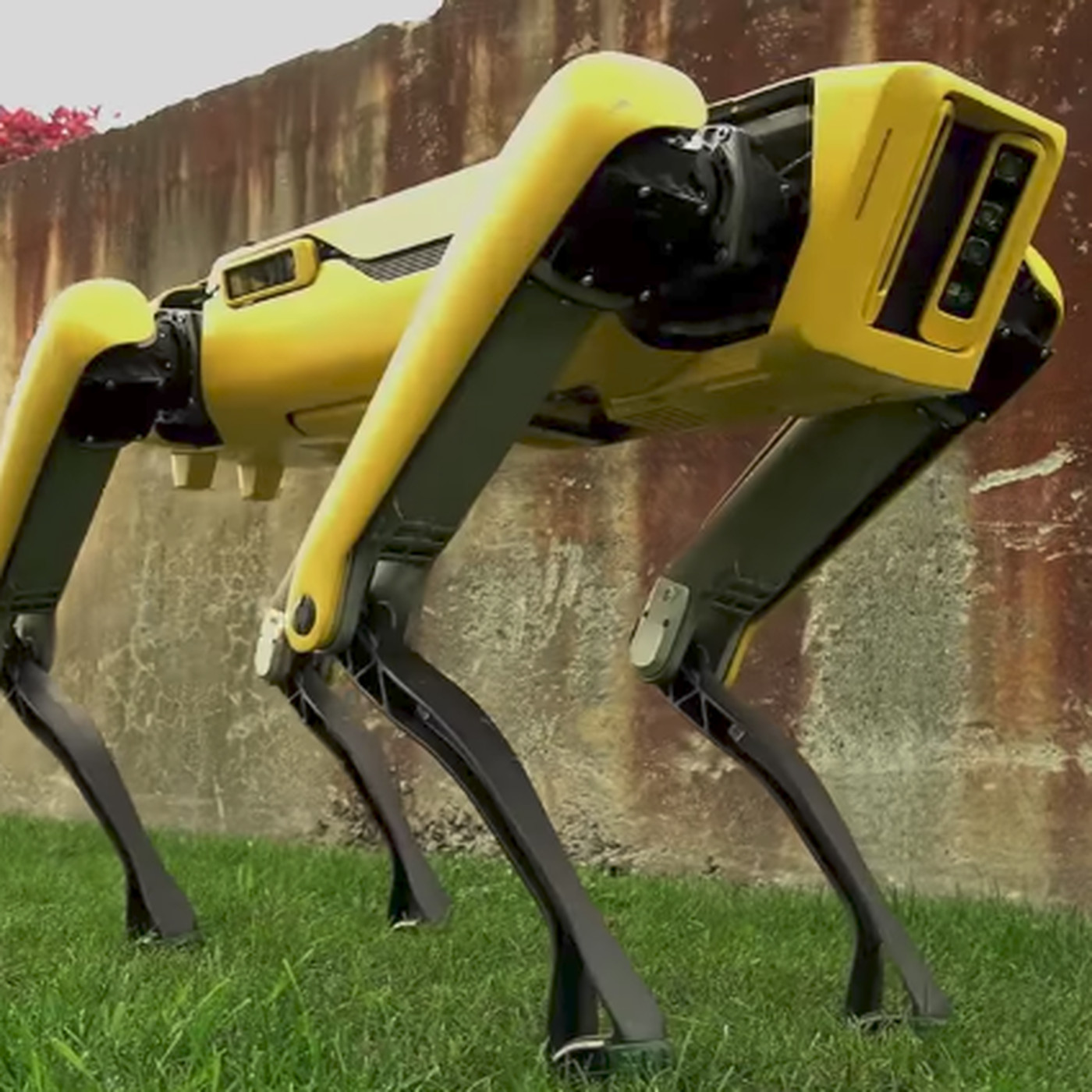 Boston Dynamics Latest Robot Dog Is Slightly Less Terrifying The