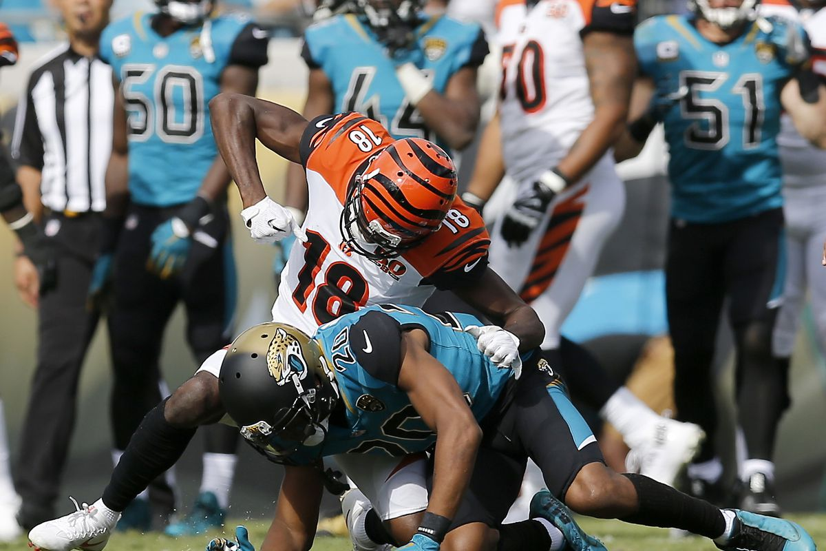 NFL Week 7 Jaguars at Bengals game preview: Of feline and feral