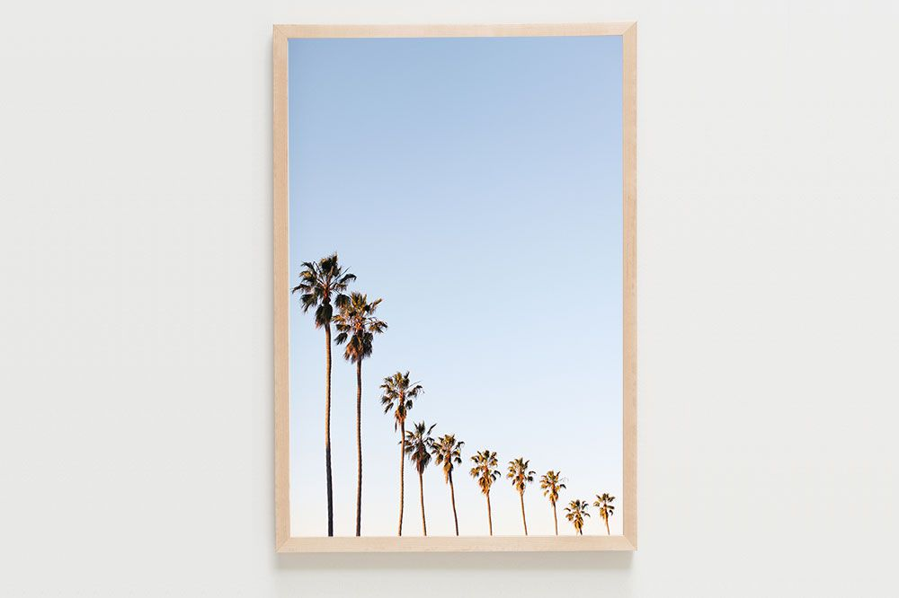 photo of skinny palm trees against a blue sky
