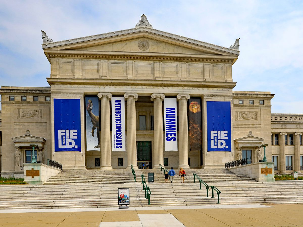 The exterior of the Field Museum in Chicago. The facade is tan and there are columns next to the entrance.