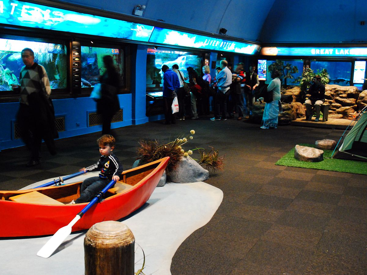 The interior of an aquarium. There are row boats on display. A child is in one of the row boats. There are displays on the wall with information.
