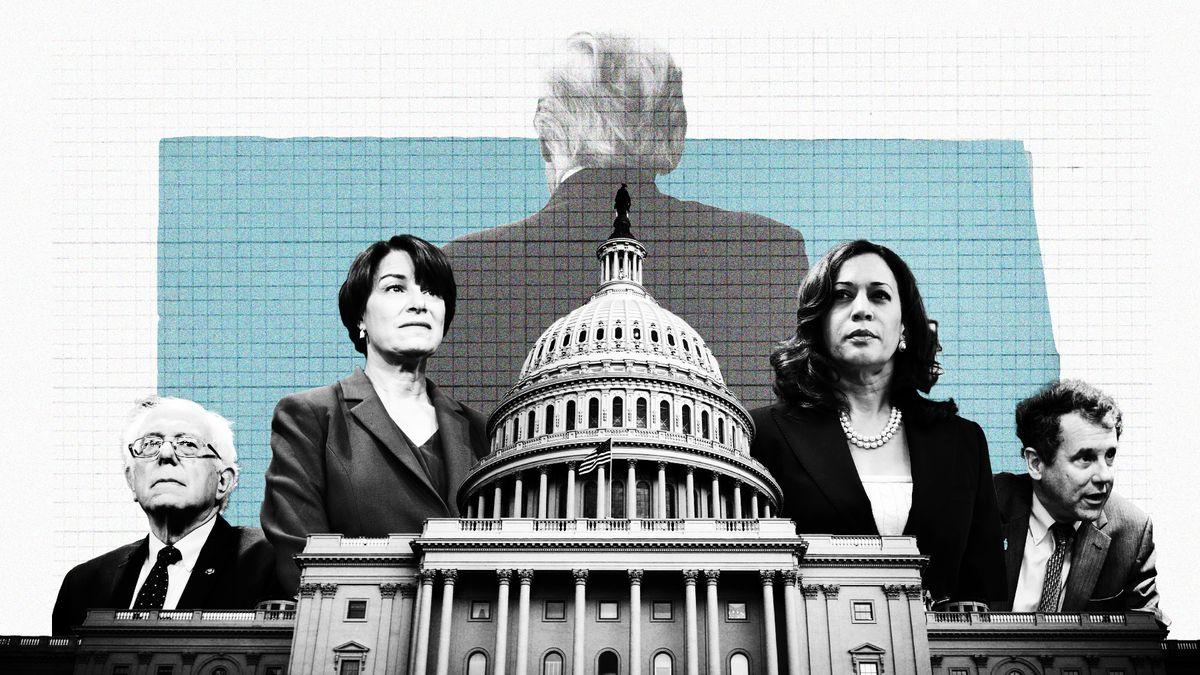 Senate Candidates Stake Out A Range Of Positions On >> Where 2020 Democratic Presidential Candidates Stand On Trade Policy
