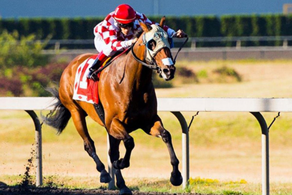Herbie D, who could become the second straight B.C.-bred to win the race, was assigned 121 lbs for the $200,000 Longacres Mile (G3) on Sunday, August 18.