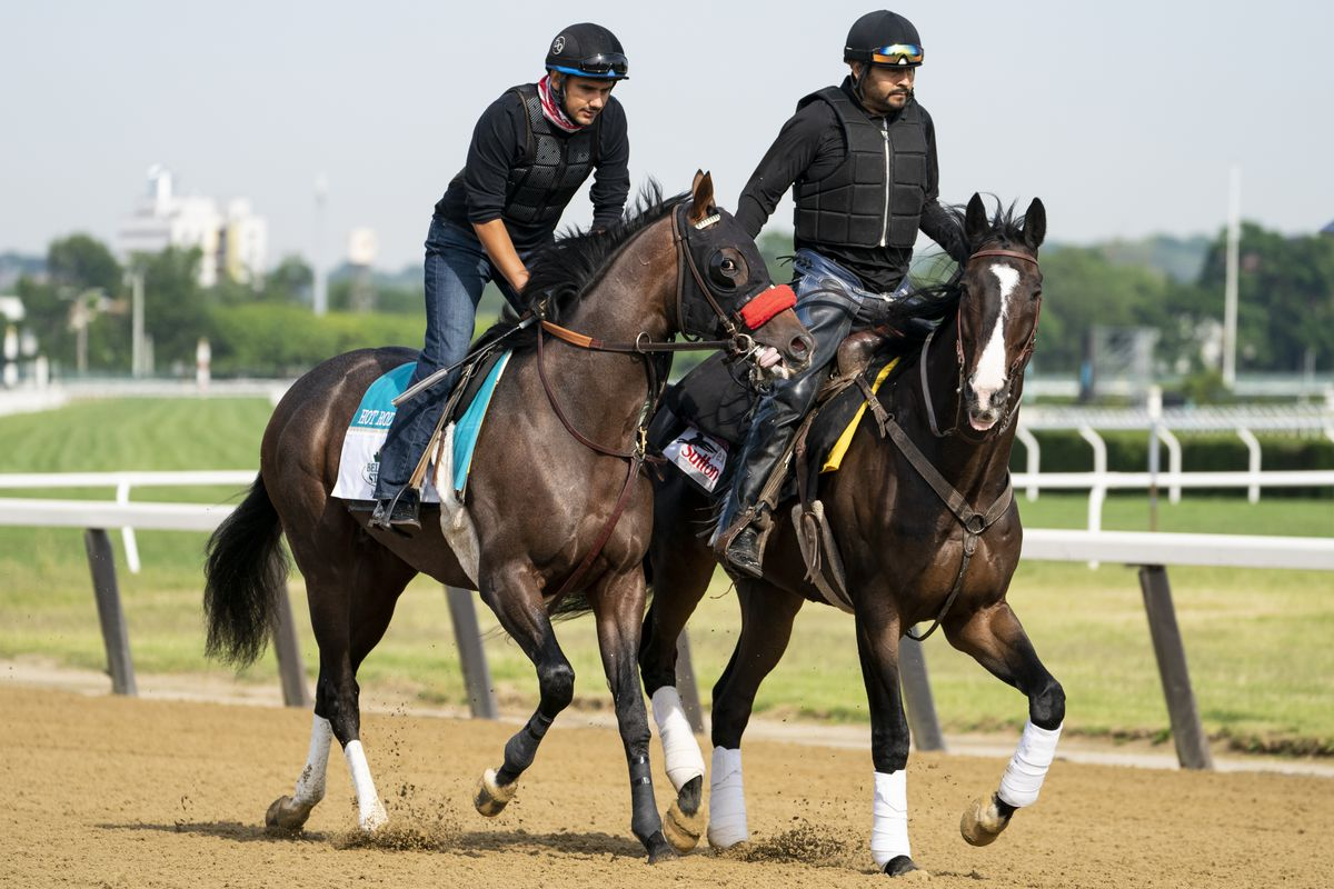 Belmont stakes entrant Hot Rod Charlie (left) and his companion horse Lava Man are led onto the main track for a training run Wednesday ahead of the 153rd Belmont Stakes horse race at Belmont Park in Elmont, N.Y.