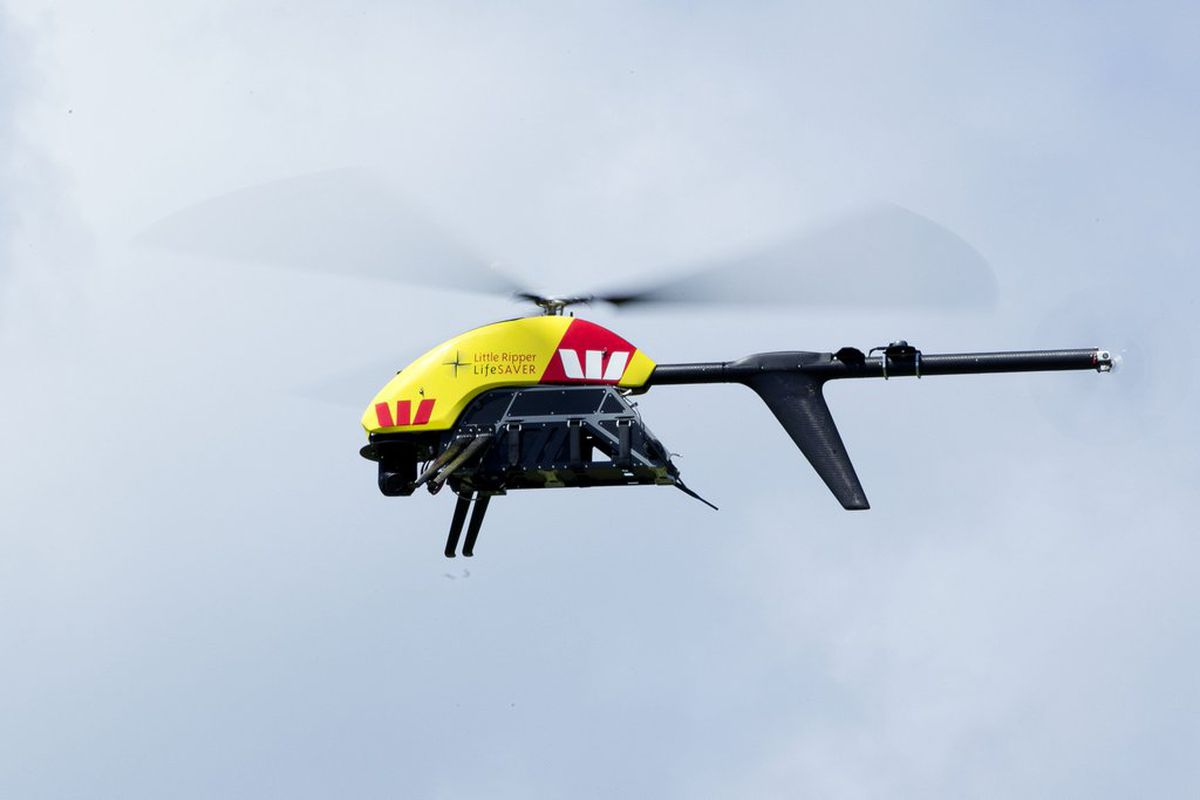 Shark-detecting drones take to the skies in Australia - The