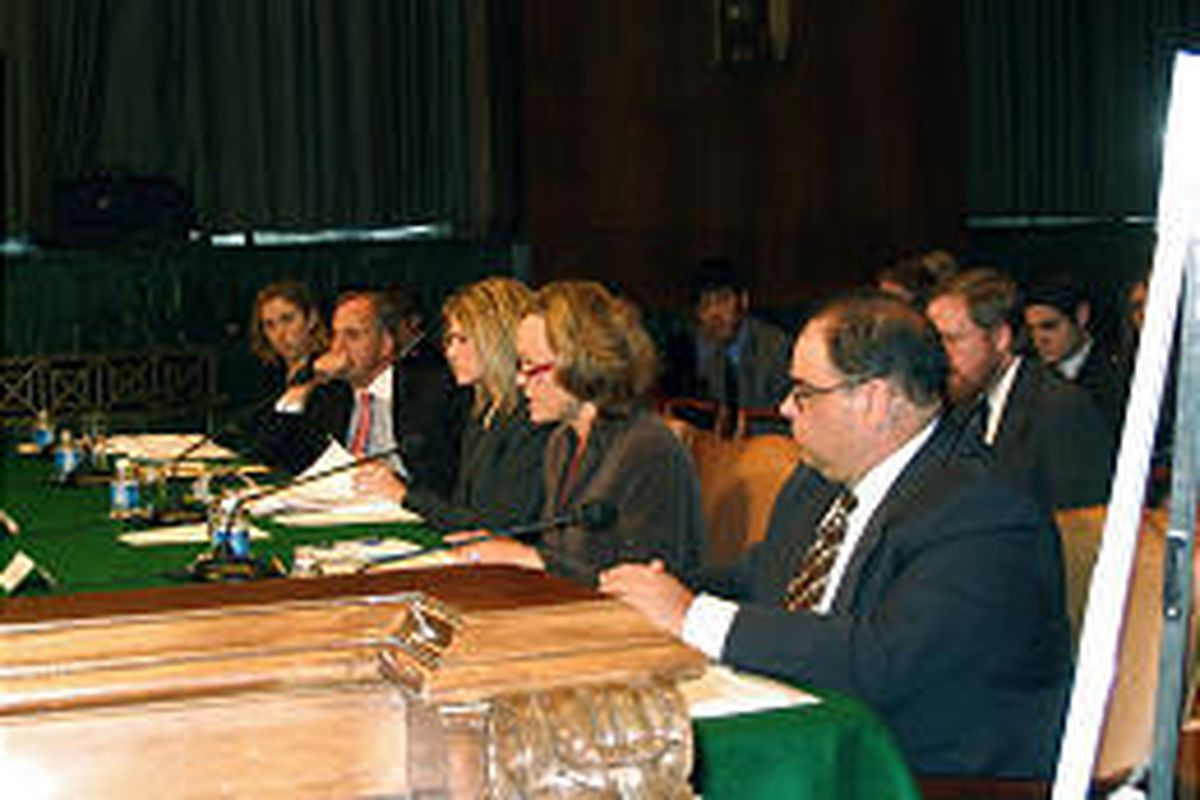 Jill Manning, third from left, testifies before the Senate subcommittee on Thursday.
