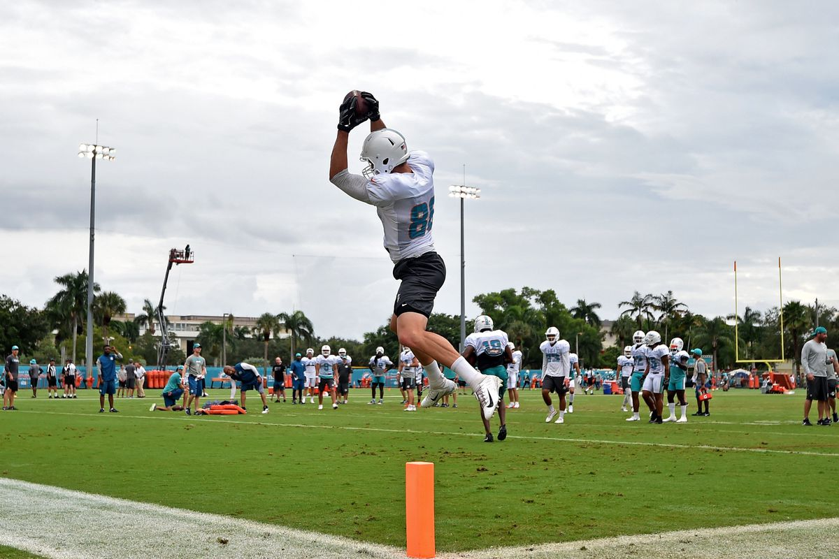 100% authentic e7fe2 4fd4d Dolphins TE Mike Gesicki Almost Hauls in Ridiculous ...