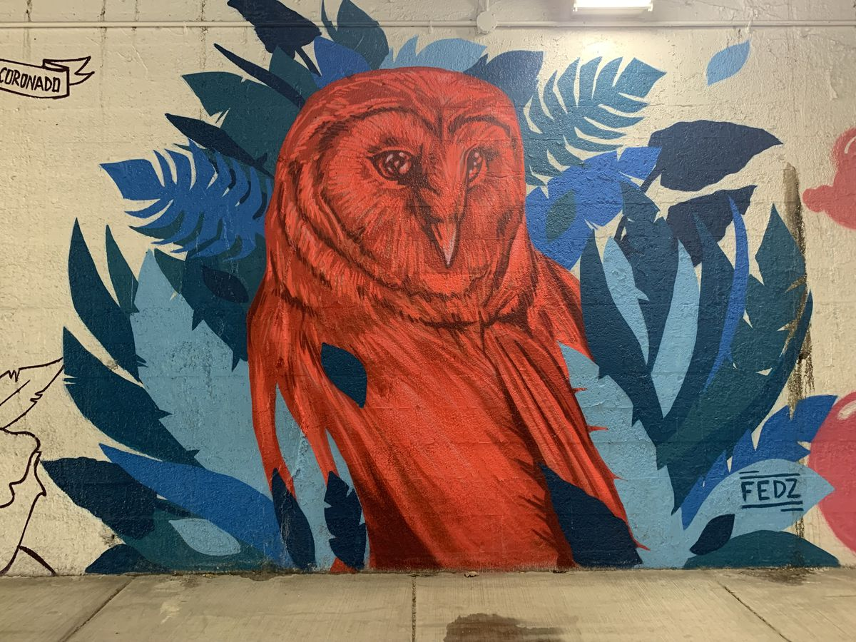 """Berwyn artist Fernando """"Fedz"""" Caldera says the owl in this mural is """"more of a symbolic thing of being alert and aware of your surroundings, especially with what's going on in the world with Black Lives Matter"""" and the challenges facing people of color."""