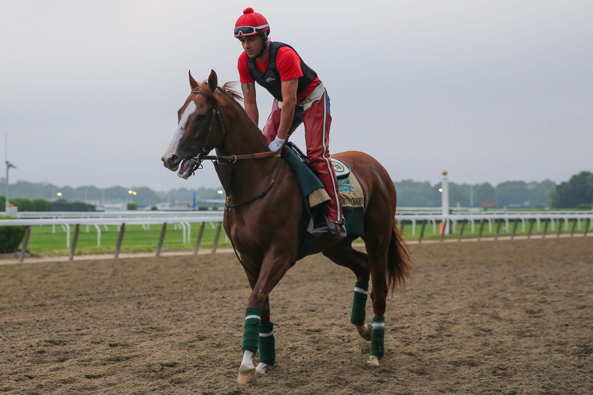 California Chrome warms up at Belmont