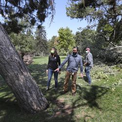 Salt Lake City Mayor Erin Mendenhall, left, and Tony Gliot, director of the Salt Lake City Urban Forestry Division, lon Wednesday, Sept. 9, 2020, look at huge trees that were toppled by high winds in Liberty Park following a storm on Tuesday. Mendenhall and Gilot talked with members of the media about the storm and the damaged it caused.